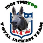 The TMRzoo NFL Total Jackass Team 2008: Offense
