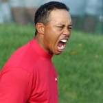 tiger-woods-mad-stupid