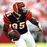 Cincinnati Bengals WR Chad Ochocinco Blows Up iTunes Charts with 'Mad Chad' Mobile Game