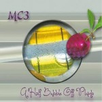 Music Reviw: A Half Bubble off Plumb by MC3