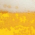 Stock-Beer-Banner