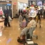 Black Friday 2013 Stun Gun Brawl & Madness Fight At Walmart In Philly! (Video)