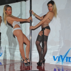 vivid cabaret new york preview 1