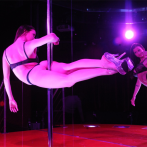 vivid cabaret new york preview 12