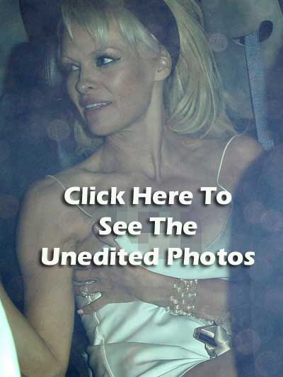 pam-anderson-redirect