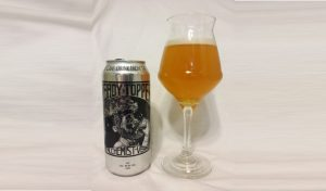 heady-topper-review